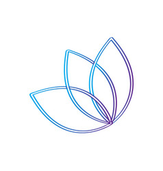 Outline of a lotus flower vector
