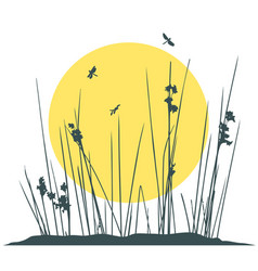 plants silhouettes and flying insects on sunset vector image