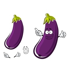Purple eggplant or aubergine vegetable vector image