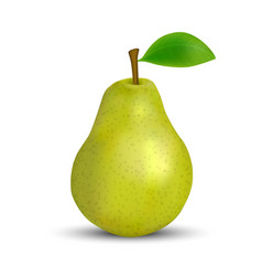 realistic green pear isolated template for your vector image