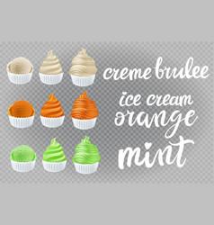 Set creme brulee vanilla orange mint kiwi ice vector