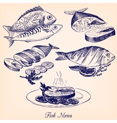 set of hand drawn fish dishes vector image