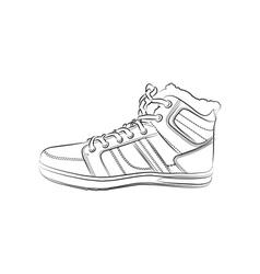 contour shoes cartoon sneaker vector image