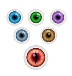 Set of colorful eye balls vector image vector image