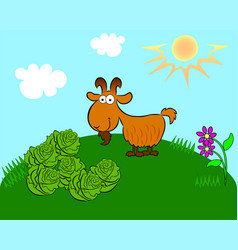 goat on the field with cabbage vector image
