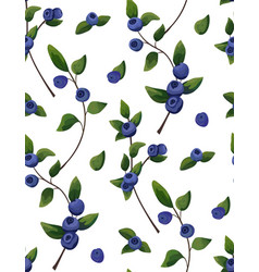 natural seamless pattern blueberry branch vector image