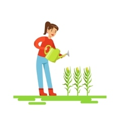 Woman Watering Corn Crops Farmer Working At The vector image