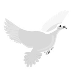 White pigeon icon gray monochrome style vector image vector image