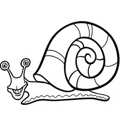 snail mollusk cartoon for coloring book vector image