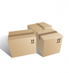 boxes carton vector image