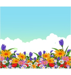 flowers garden for you design vector image vector image