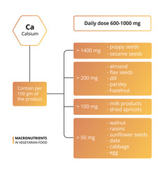 Calcium basic macronutrients vector
