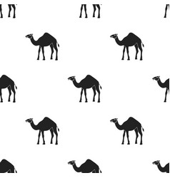 Camel icon in black style isolated on white vector