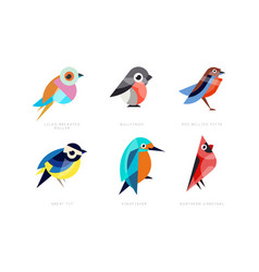 colorful stylized birds collection lilac breasted vector image