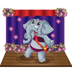 Elephant on stage vector