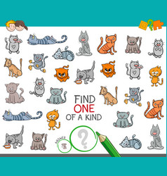 Find one a kind with cat animal character vector