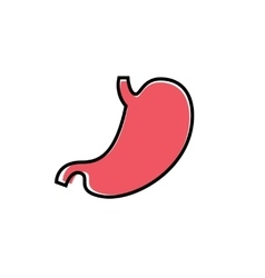 Flat human stomach icon vector image