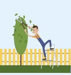 gardener working in the park vector image
