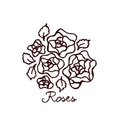 Handsketched bouquet of roses vector image