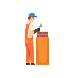 professional builder laying bricks in wall male vector image