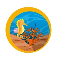 Sea horse icon Sea life design graphic vector