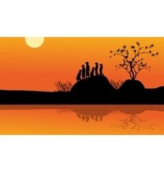Meerkat in lake of silhouette vector image vector image