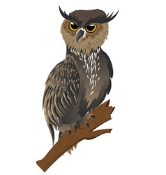 Horned Owl on a Branch vector image vector image