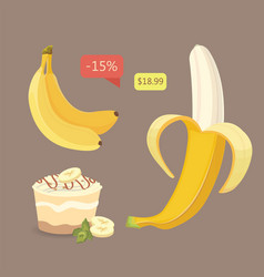 fresh banana fruits collection of vector image vector image