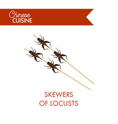skewers of locusts on sticks isolated on white vector image vector image