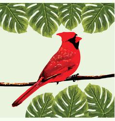 bird 2 silhouettes vector image
