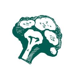 Broccoli logo on white background vector