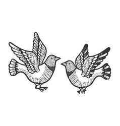 dove pigeon birds tattoo sketch engraving vector image