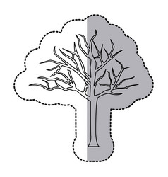 figure bare oak tree icon vector image