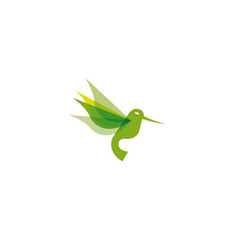 hummingbird green flying logo vector image