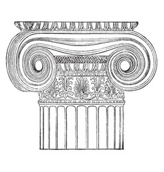 Ionic angle column temple of minerva polias at vector