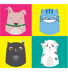 cartoon dogs and cats collection vector image vector image