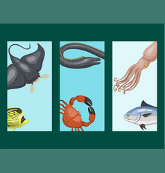 set of different types of sea animals cards vector image