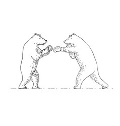 two grizzly bear boxers boxing drawing vector image