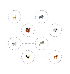 flat icons camelopard kine kitty and other vector image vector image