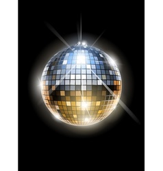 mirror disco ball vector image