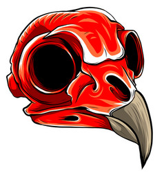 realistic red bird skull for vector image