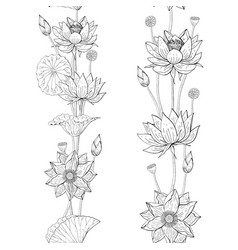 Seamless brush from lotus flowers and leaves vector