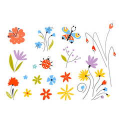 set multicolored spring flowers vector image