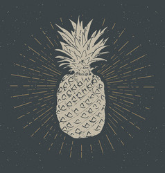 vintage label hand drawn pineapple grunge vector image