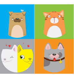 funny dogs and cats pattern vector image