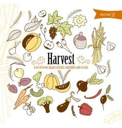 harvest2 vector image