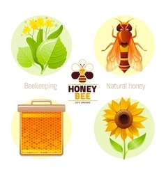 Bee honey icon set with cartoon flat icons - vector image vector image