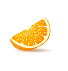 orange slice with peel vector image