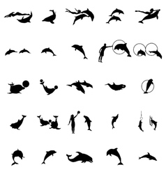 Dolphinarium silhouette set simple style vector image vector image