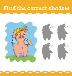 find correct shadow education games with three vector image